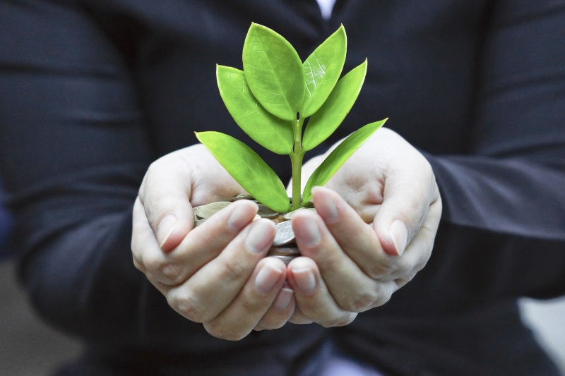 businessman_holding_plant_in_hands