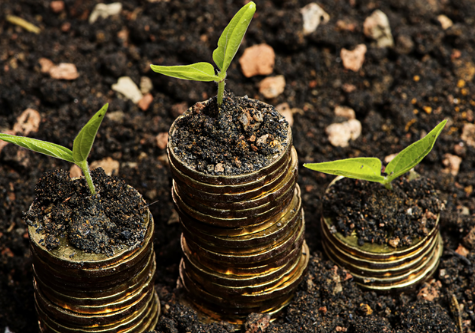 growinginvestment