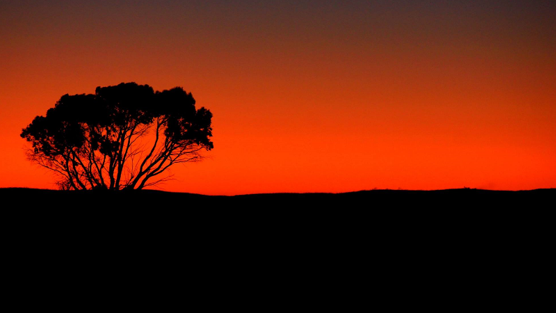 Outback in South Australia