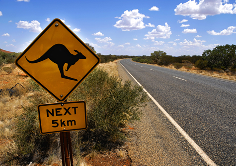 Kangaroo_sign