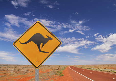 kangaroo_sign_in_desert