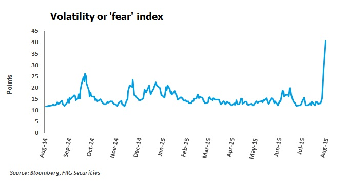 Volatility or 'fear' index